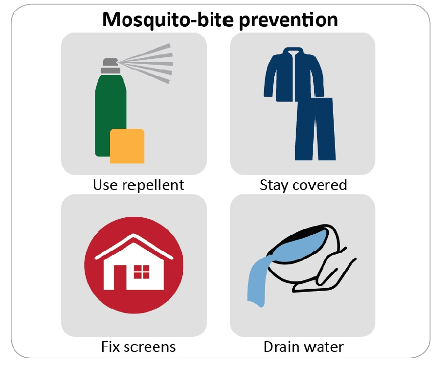 Mosquito-bite prevention by using bug spray, wearing long sleeved tops and pants, repairing screens and dumping standing water