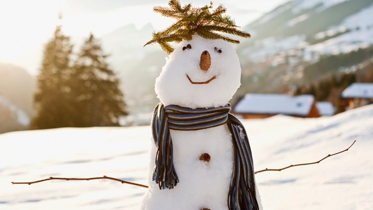 Snowman with scarf set against snowy hillside background