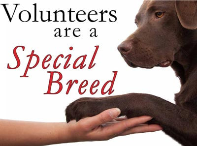 volunteers are a special breed
