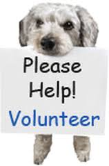 dog holding a sign that says please help volunteer