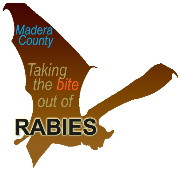 Brown bat graphic with Madera County Take a bite out of rabies set on top